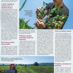 Aronija Slovenija v reviji Zara Jana-3